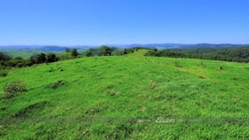 Rural / Farming commercial property for sale at 200 Days Road Belbora NSW 2422
