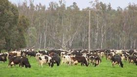 Rural / Farming commercial property for sale at 839 EAST BARHAM ROAD Barham NSW 2732