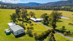 Rural / Farming commercial property for sale at 427 Main Creek Road Dungog NSW 2420