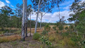Rural / Farming commercial property for sale at 41 Old Toweran Road Berajondo QLD 4674