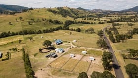 Rural / Farming commercial property for sale at 1111 Glendonbrook Road Singleton NSW 2330