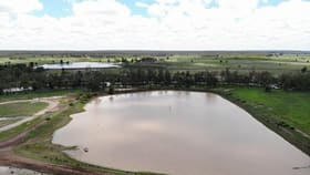 Rural / Farming commercial property for sale at 2242 ACRES GRAZING & IRRIGATION OPPORTUNITY Dulacca QLD 4425