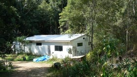 Rural / Farming commercial property for sale at 1243 Kalang Road Bellingen NSW 2454