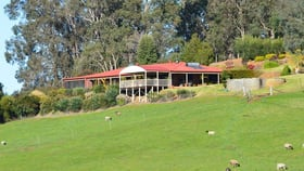 Rural / Farming commercial property for sale at 128 TREVENA ROAD Donnybrook WA 6239