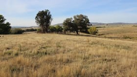 Rural / Farming commercial property sold at 3486 Jingellic Road Mannus NSW 2653