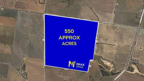 Rural / Farming commercial property for sale at 165 Buftons Road Balliang VIC 3340