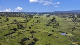 Rural / Farming commercial property for sale at 1430 New Valley Road Inverell NSW 2360