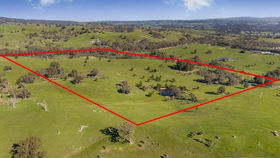 Rural / Farming commercial property for sale at 485 Strath Creek Road Broadford VIC 3658
