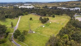 Rural / Farming commercial property for sale at 139 Orchard Road Kangy Angy NSW 2258