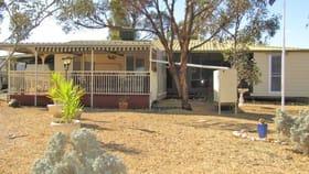 Rural / Farming commercial property for sale at 498 Ring Road Morgan SA 5320