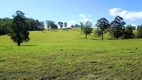 Rural / Farming commercial property for sale at 1275 The Tops Road 'Home Hill' Nowendoc NSW 2354