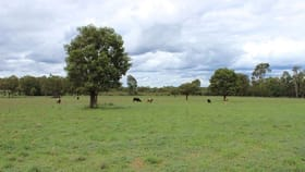 Rural / Farming commercial property for sale at Kamala/16234 Oxley Highway Dandry NSW 2357
