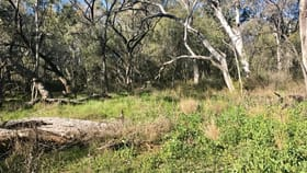 """Rural / Farming commercial property for sale at """"Coglin"""" Gardens Road Wee Waa NSW 2388"""