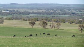 Rural / Farming commercial property for sale at 2761 Allanoooka Springs Road Walkaway WA 6528