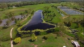 Rural / Farming commercial property for sale at 602 Hodzic Road Biboohra QLD 4880