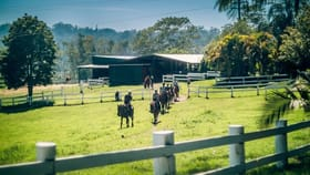 Rural / Farming commercial property for sale at 758 Valery Road Valery NSW 2454