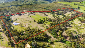 Rural / Farming commercial property for sale at 120 Stotts Road Wandong VIC 3758