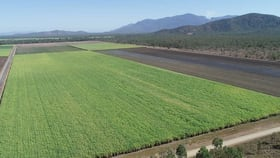 Rural / Farming commercial property for sale at 612 Upper Haughton Road Horseshoe Lagoon QLD 4809