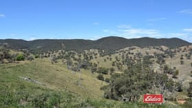 Rural / Farming commercial property for sale at 2012 Turondale Road Turondale NSW 2795