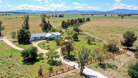 Rural / Farming commercial property for sale at 489 Stoney Creek Road Narrabri NSW 2390