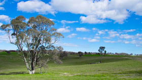 Rural / Farming commercial property for sale at 2625 TRUNKEY ROAD Caloola NSW 2795