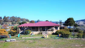 Rural / Farming commercial property for sale at 611 Tombong Road Tombong NSW 2633
