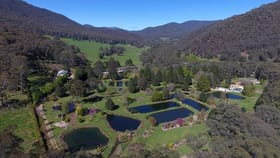 Rural / Farming commercial property for sale at 10 Stony Creek Road Harrietville VIC 3741