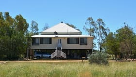 Rural / Farming commercial property for sale at 113 Woodbine Road Blackall QLD 4472