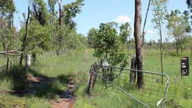 Rural / Farming commercial property for sale at Lot 43 Brewers Road Kippenduff NSW 2469