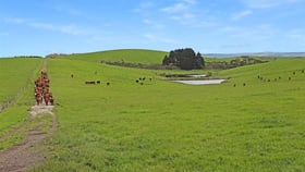 Rural / Farming commercial property for sale at Lot 1 Scott Road Buffalo VIC 3958