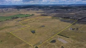 Rural / Farming commercial property for sale at 30 Blighs Lane Goulburn NSW 2580