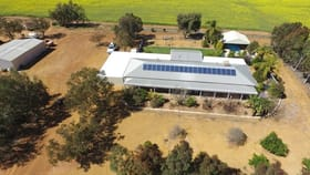 Rural / Farming commercial property for sale at 267 Beering Road Northam WA 6401