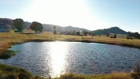 Rural / Farming commercial property for sale at Lot 3/744 Queens Pinch Road Mudgee NSW 2850