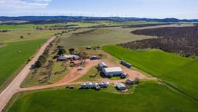 Rural / Farming commercial property for sale at 178 Yabmanna Road Cowell SA 5602