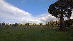 Rural / Farming commercial property for sale at 250 Vonhoffs Road Goombungee QLD 4354