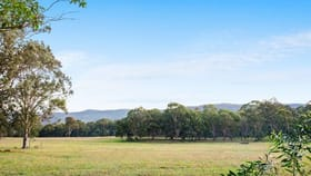 Rural / Farming commercial property for sale at 63 Millfield Road Paxton NSW 2325