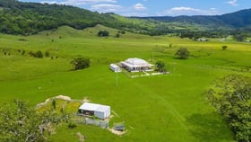 Rural / Farming commercial property for sale at 175 Wilsons Creek Road Wilsons Creek NSW 2482