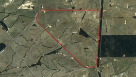 Rural / Farming commercial property for sale at 424 Challis Road Pingrup WA 6343