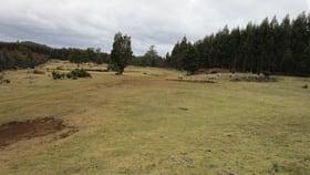 Rural / Farming commercial property for sale at - Kop Road Erriba TAS 7310