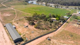Rural / Farming commercial property for sale at Ulmurra Farm Rufus River Road via Wentworth Rufus NSW 2648