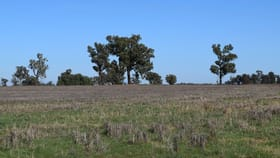 Rural / Farming commercial property sold at 3013 Lachlan Valley Way 'Mareetha' Forbes NSW 2871