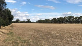 Rural / Farming commercial property for sale at 513 Mckenzie Road Mooroopna North West VIC 3616