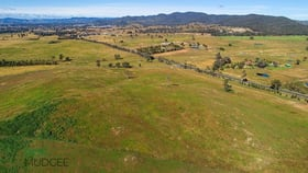 Rural / Farming commercial property for sale at 3 & 4/400 Castlereagh Highway Mudgee NSW 2850