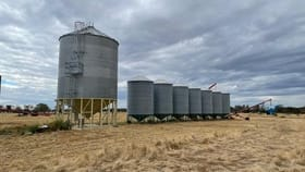 Rural / Farming commercial property for sale at Gilgandra NSW 2827