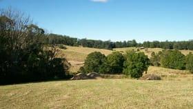 Rural / Farming commercial property for sale at 36 Jordan Road Bellingen NSW 2454