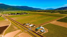 Rural / Farming commercial property for sale at 314 Anderson Road Aloomba QLD 4871