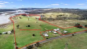 Rural / Farming commercial property for sale at 10282 Tasman Highway Little Swanport TAS 7190