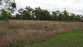 Rural / Farming commercial property for sale at 198A Boys Road Alton Downs QLD 4702