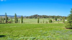 Rural / Farming commercial property for sale at 126 Bobadah Road Mudgee NSW 2850