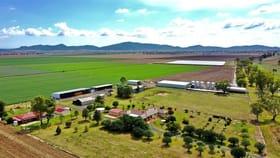 "Rural / Farming commercial property for sale at ""Bindaree"" 43 Orange Grove Road Gunnedah NSW 2380"
